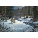 Valley of Shadows by Mark Keathley