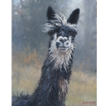 Smiley Jane Alpaca by Mark Keathley