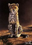 Cub Scout by Edward Aldrich