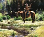 Dragonflies by Martin Grelle