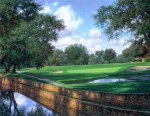 The 16th at Colonial by Larry Dyke