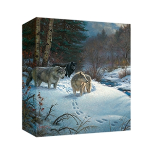 Valley of Shadows by Mark Keathley - Gallery Wrap