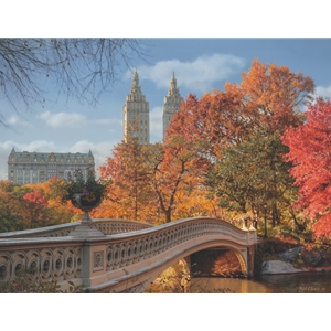 Autumn in Central Park by Rod Chase