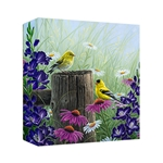 Goldfinch Meadow by Abraham Hunter - Gallery Wrap